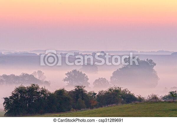 Misty landscape - csp31289691