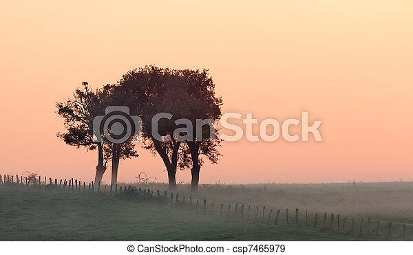 misty landscape - csp7465979