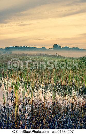 Misty landscape with a quiet lake - csp21534207