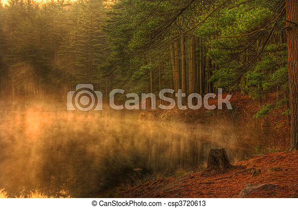 Misty Morning Forest Lake - csp3720613