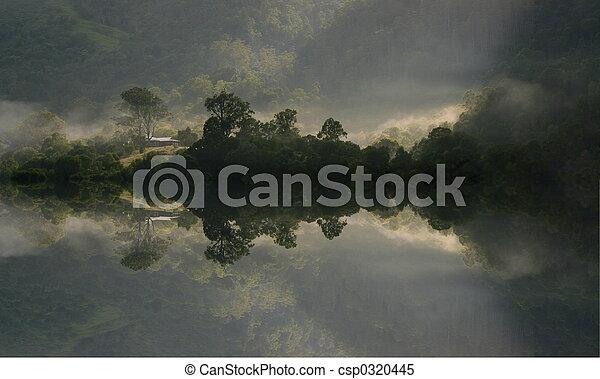 Misty Morning - csp0320445