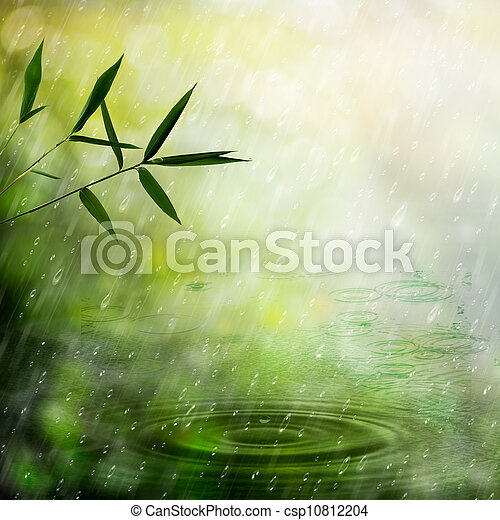 Misty rain in the bamboo forest. Abstract natural backgrounds - csp10812204