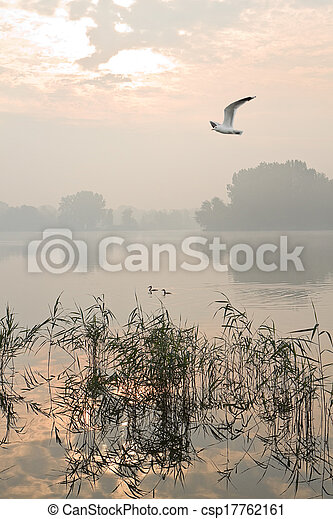 Misty sunrise at the lake - csp17762161
