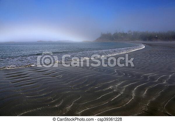 Misty Tofino Beach - csp39361228