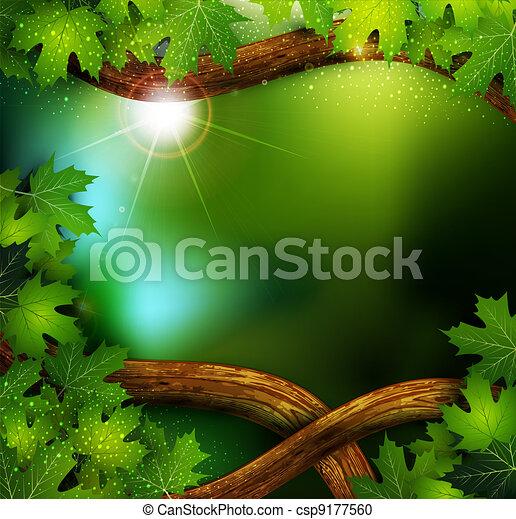 mistyczny, tajemniczy, tło, las, drzewa - csp9177560