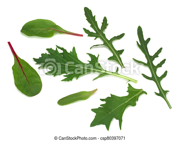 Mix of fresh lettuce, top view isolated on white background - csp80397071