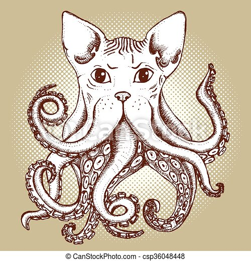 Mixed cat and octopus - csp36048448