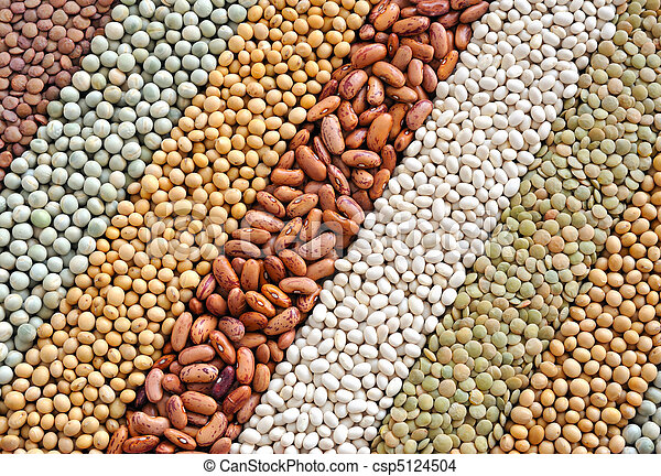Mixture of dried lentils, peas, soybeans, beans  - background - csp5124504