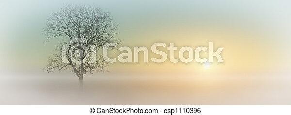 mlhavý, východ slunce - csp1110396
