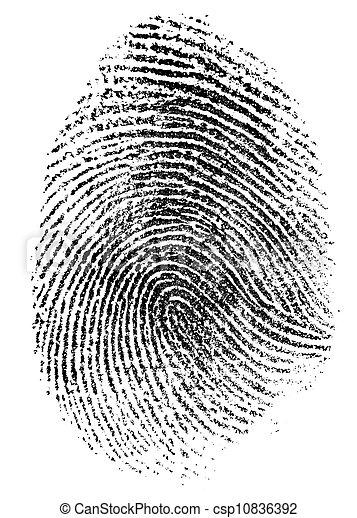 modèle, blanc, isolé, empreinte doigt - csp10836392