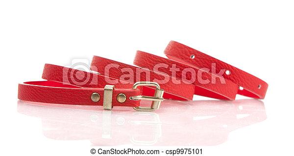 moda, vermelho, cinto - csp9975101