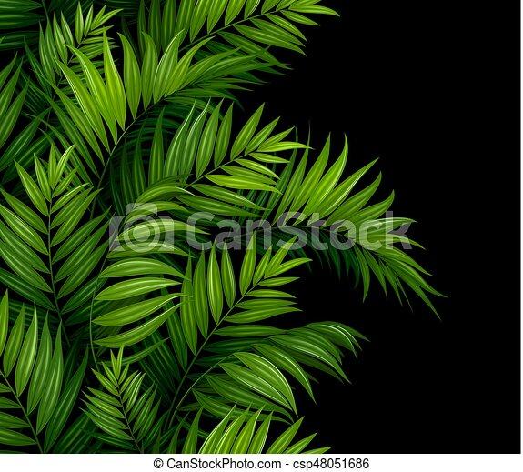 modello, foglie, seamless, tropicale, fondo., palma, nero, bordo - csp48051686