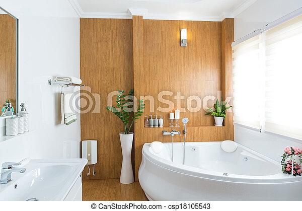 Modern house bathroom interior - csp18105543