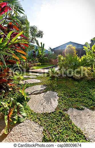 Modern house garden filled with plants and lawn on bathroom filled with plants, bedroom filled with plants, house full of plants, house books,