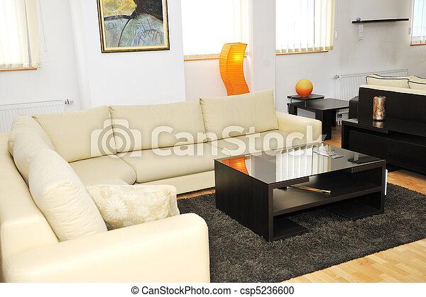 modern livingroom indoor - csp5236600