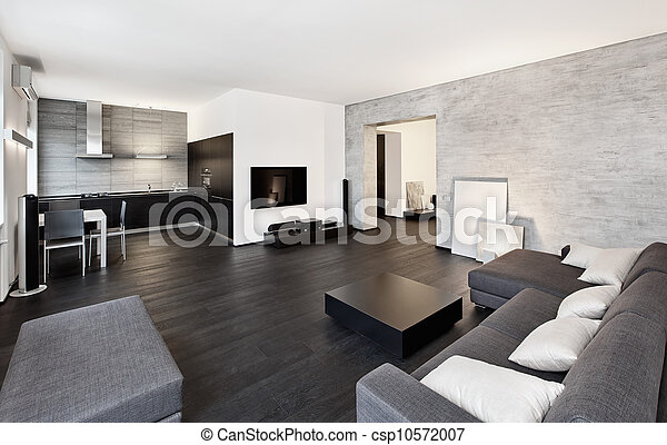 Modern minimalism style drawing-room interior in black and ...