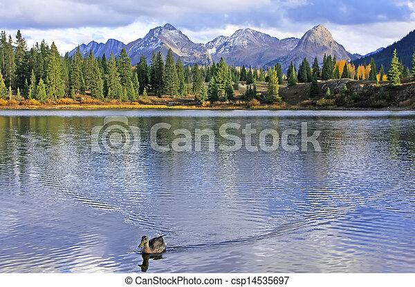 molas, 荒野, colorado, 針, 湖, weminuche, 山 - csp14535697