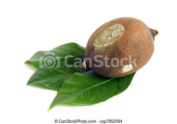 Moldy dried lemon with green leaves - csp7852094