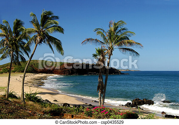 Molokai Coastline - csp0435529