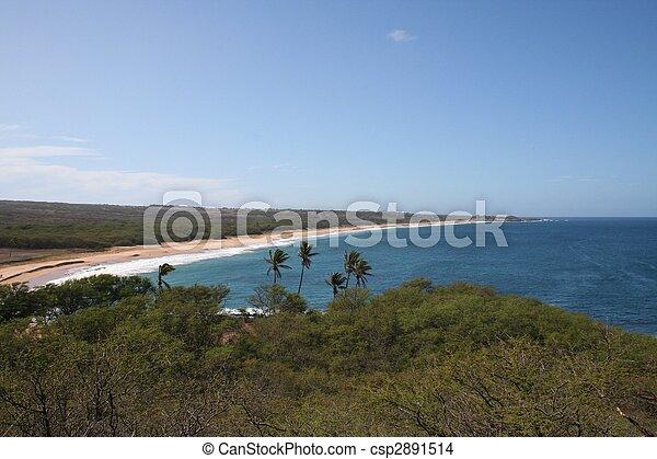 Molokai Hawaii Coast - csp2891514
