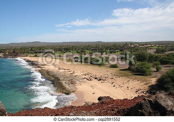 Molokai Hawaii Coast - csp2891552