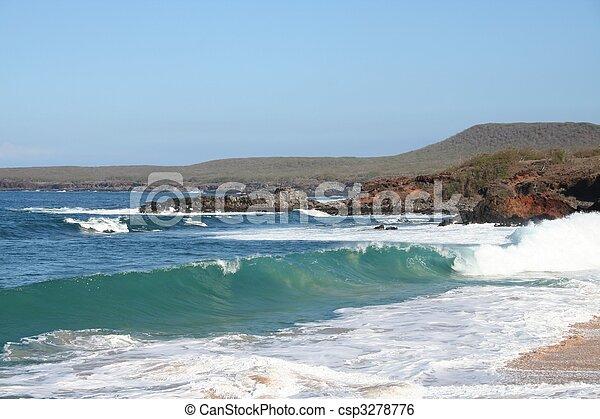 Molokai Hawaii Waves - csp3278776