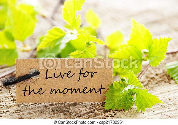 momento, vivo, etiqueta - csp21782351