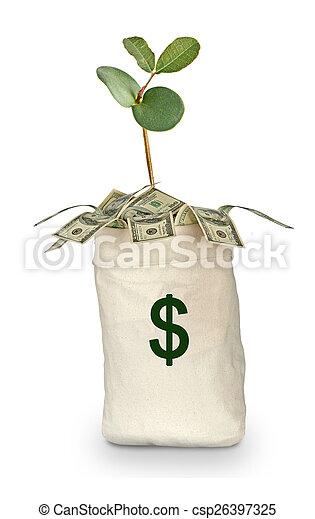 Money bag - csp26397325