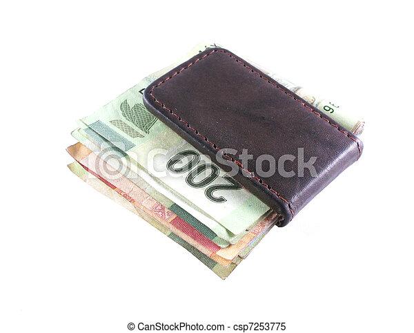 Money Clip - csp7253775