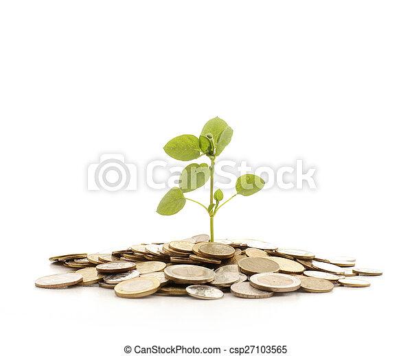 Money - csp27103565