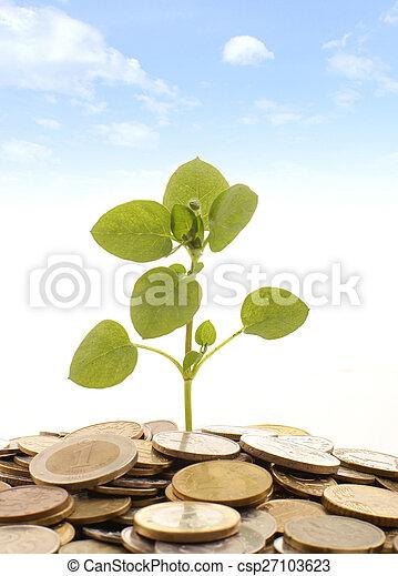 Money - csp27103623