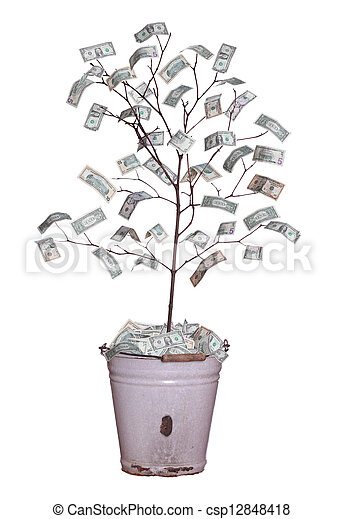 money tree - csp12848418