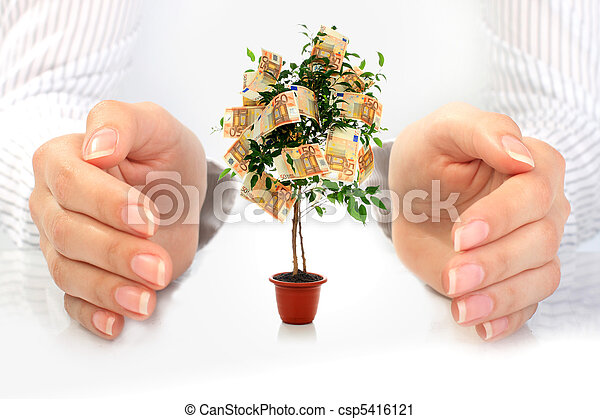 Money tree. - csp5416121