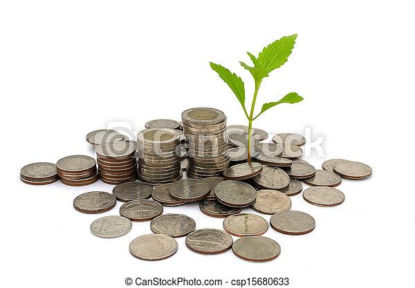 Money tree - csp15680633