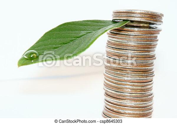 money tree - csp8645303