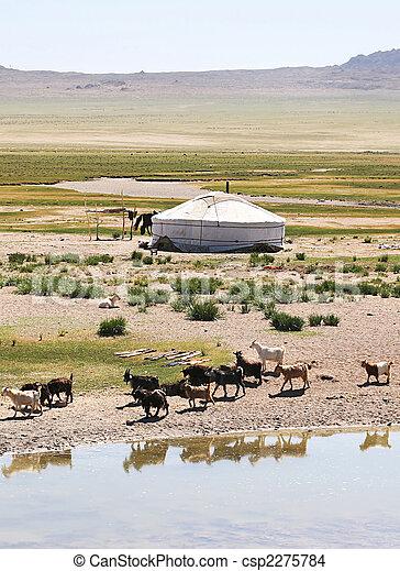 mongolia - csp2275784