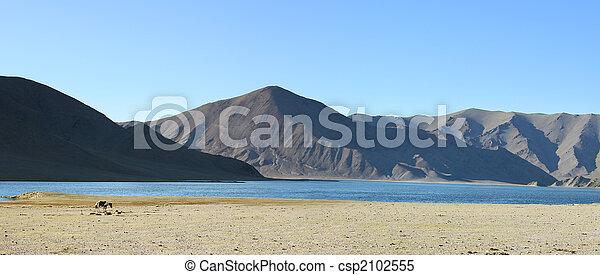 mongolian, 風景 - csp2102555