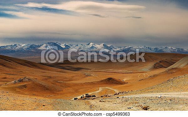 mongolian, 風景 - csp5499363