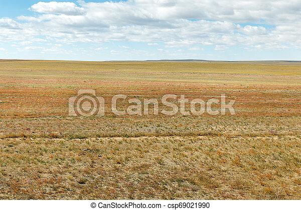 mongolian, 風景, 典型的 - csp69021990