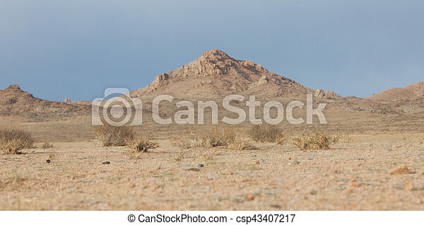 mongolian, 風景, 典型的 - csp43407217