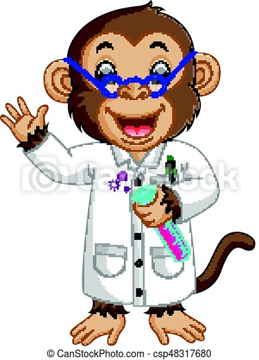 Monkey Conducting a Laboratory Experiment - csp48317680