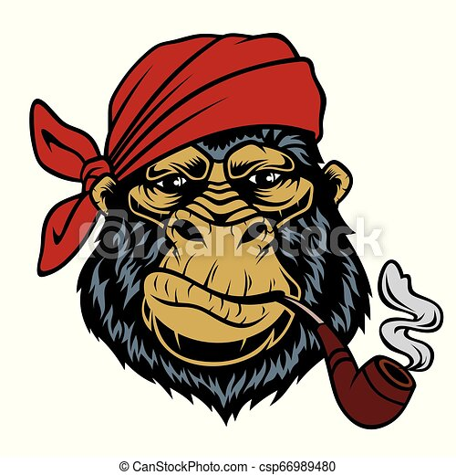 Monkey in a bandana with a smoking pipe. - csp66989480