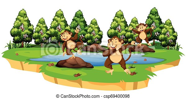Monkey in nature scene - csp69400098