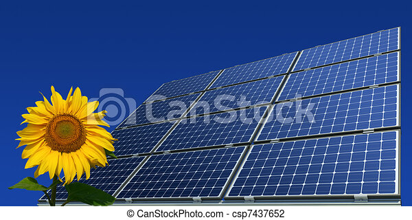 Mono-crystalline solar panels - csp7437652