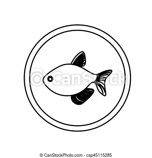 Monochrome line contour with fish in circular frame vector illustration.