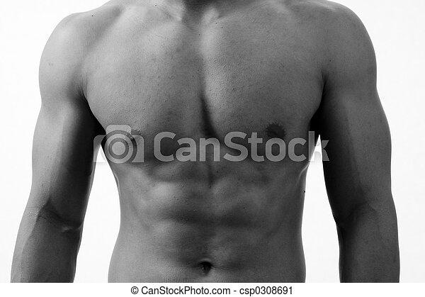 monocromático, torso - csp0308691