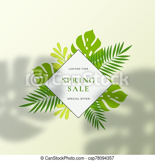 Monstera Tropical Leaves Summer Sign Or Logo Template Abstract Green Foliage With Rhombus Border And Classy Typography Download the perfect tropical leaves pictures. can stock photo