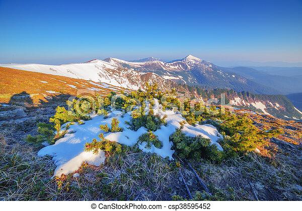 Montaña - csp38595452