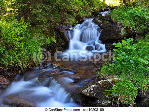 Río de montaña en el bosque en primavera - csp10203189