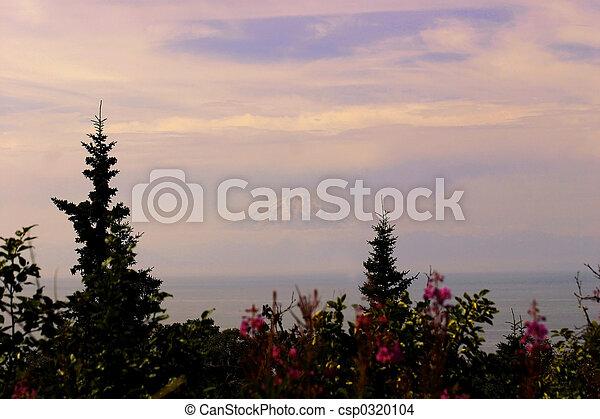 Montaña flotante - csp0320104